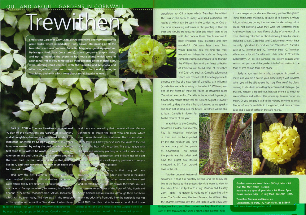 Here and Now feature - November 2010