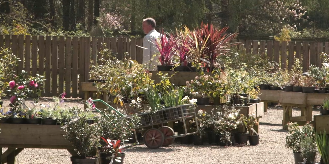 Plant Centre at Trewithen Gardens - a great place to visit in Cornwall