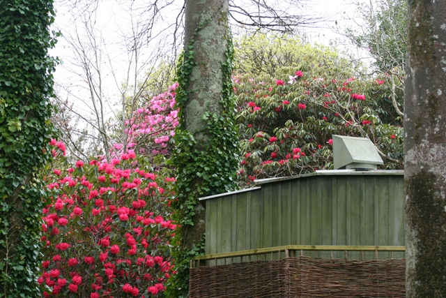 The camera obscura at Trewithen Gardens in Cornwall