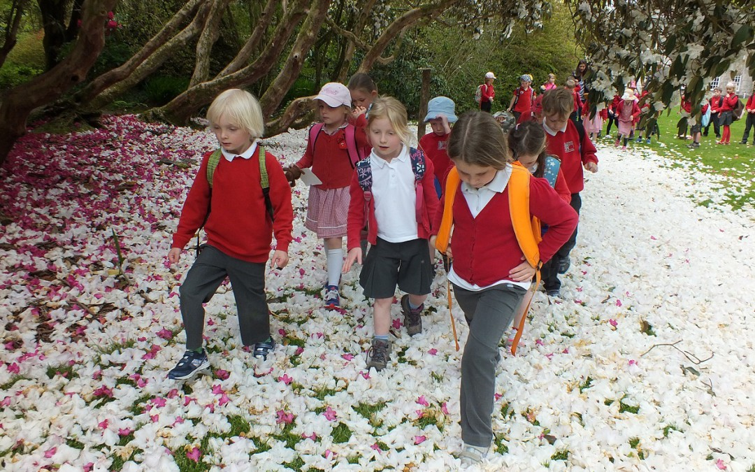 Youngsters follow in the footsteps of the great plant hunters at Trewithen Gardens