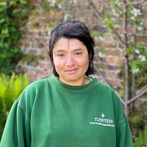 Ana Robson Gardener